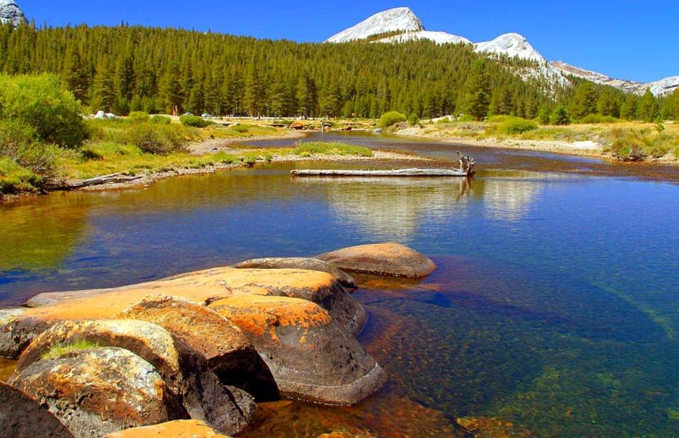 Yosemite un site d'hébergement pour camping très apprécié : Le village Curry